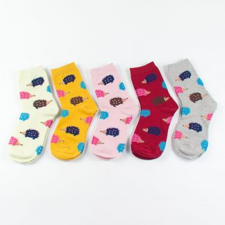 bunte Socken Igel, Japanese Korean Style, Sockenbox, Geschenkidee